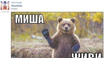 Mishi_zhivi